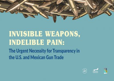 Invisible Weapons, Indelible Pain: The Urgent Necessity for Transparency in the U.S. and Mexican Gun Trade